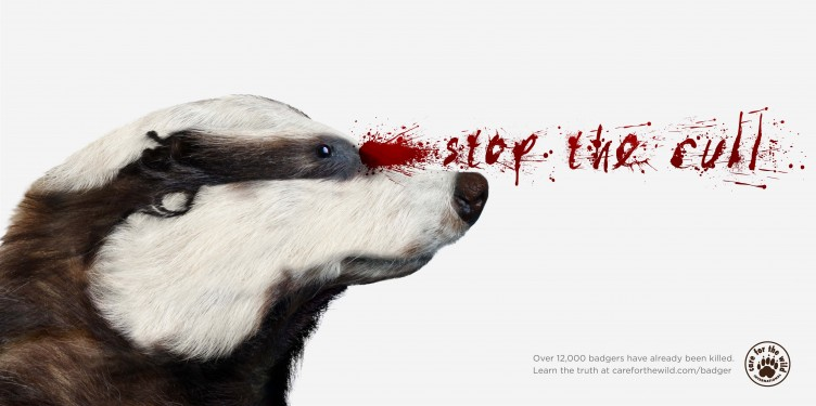 Badger-cull-ad-JWT