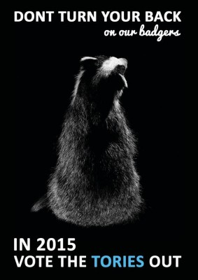 Stop the Cull Don't Turn Your Back