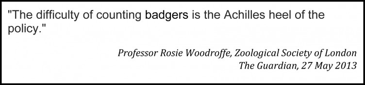 Rosie-on-Counting-Badgers